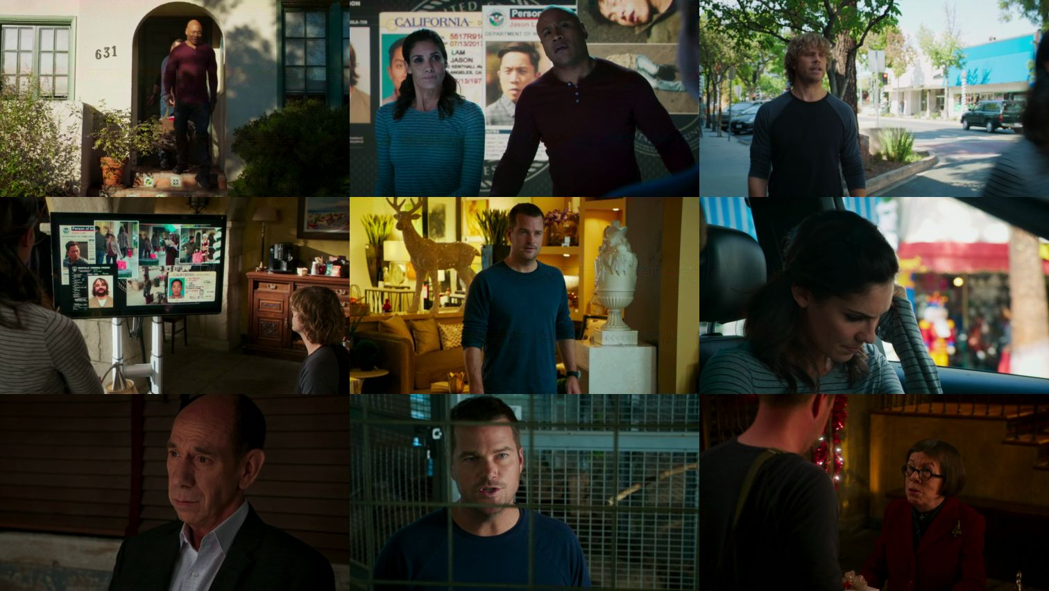 NCIS Los Angeles S07E11 720p HDTV X264-DIMENSION